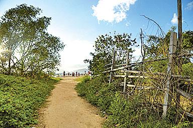 前往泥灘的小徑。