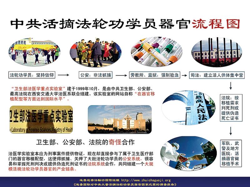 中國有龐大活人器官庫