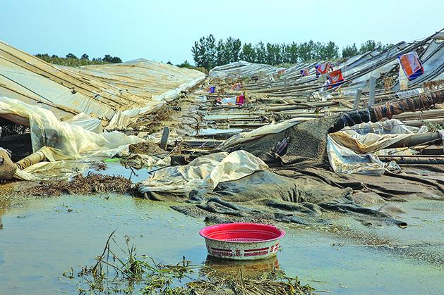 壽光市受暴雨襲擊,其上游的三大水庫同時開閘放水,導致壽光市多個村莊被淹,二十多萬個蔬菜大棚及養殖業幾乎全軍覆滅。(大紀元資料室)
