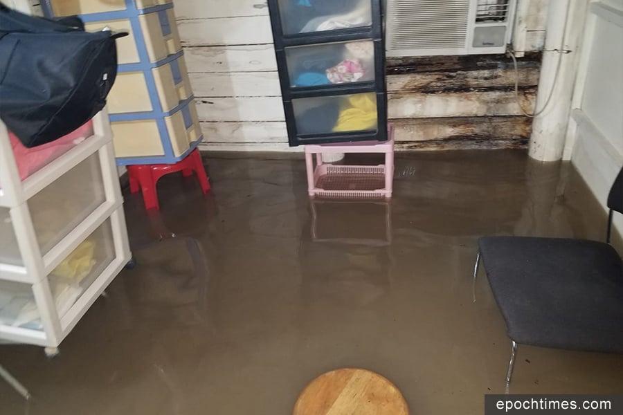 元朗新田小磡村幾十戶村屋昨日被洪水圍困。圖為花農梁日信的村屋被水浸的情況。(梁日信提供)