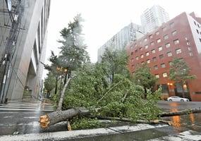 25年來最強颱風燕子襲日本