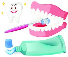 牙齦流血如何恢復牙齦的健康?