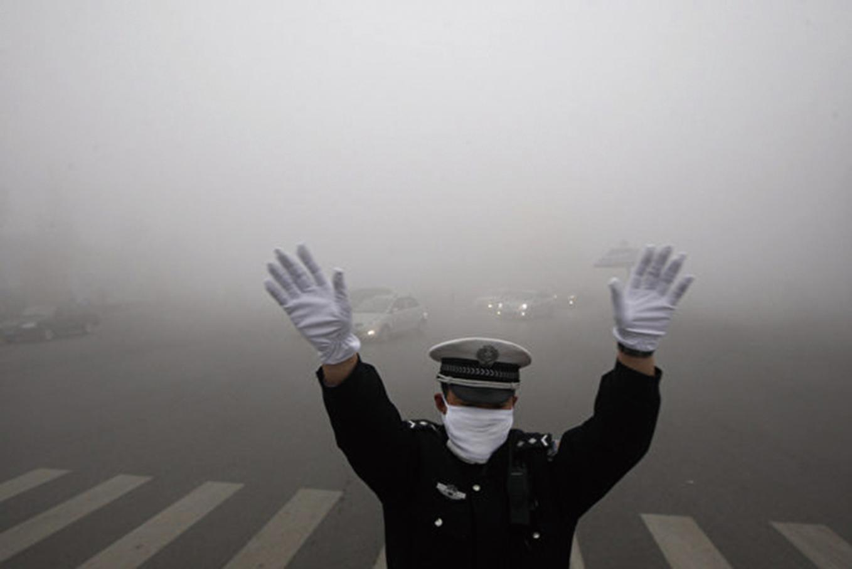 最新研究報告指出,空氣污染不僅會引起肺部疾病,還會導致人類智力「大幅度」下降,且隨著年齡增長,對於智力傷害會更加明顯。