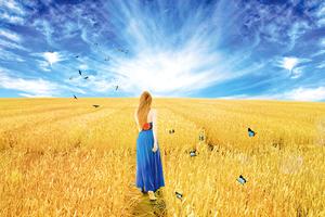 回家種田--聽見(之一) 一個返鄉女兒的家事、農事與心事