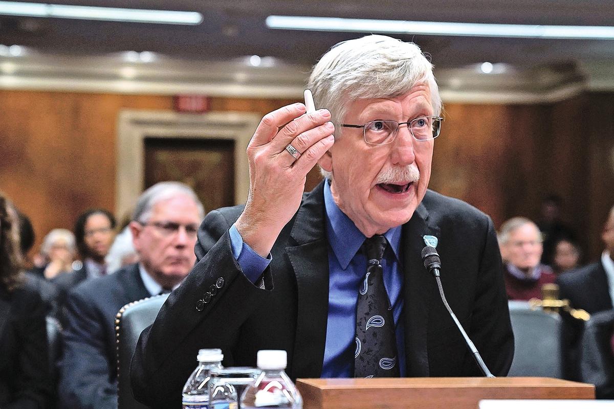 美國國家衛生研究院(NIH)院長柯林斯去年 12 月在美國參院的一個聽證會上。(Alex Wong/Getty Images)