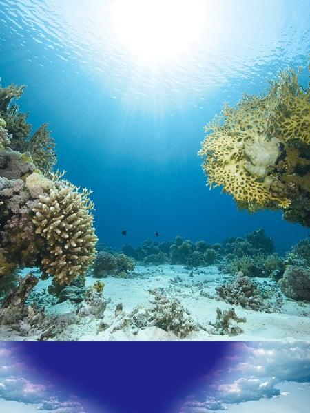外星沉船?美探險家在百慕達三角發現不明物體