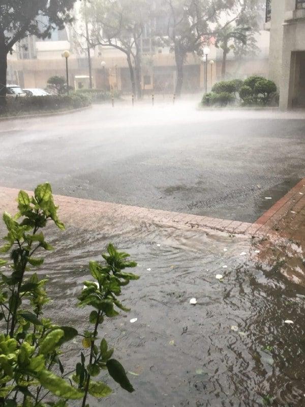 杏花邨水浸嚴重。(讀者提供)