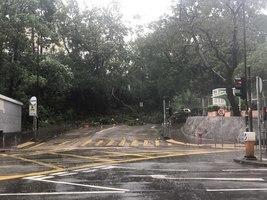 【山竹襲港】十號颱風信號香港多處路面混亂 食肆照常7點營業拒絕加價