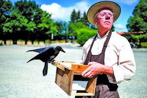 烏鴉當上清潔工 教育遊客重環保