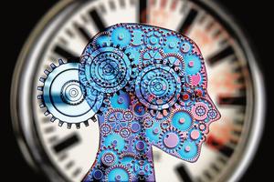 研究揭大腦對時間記憶的機密