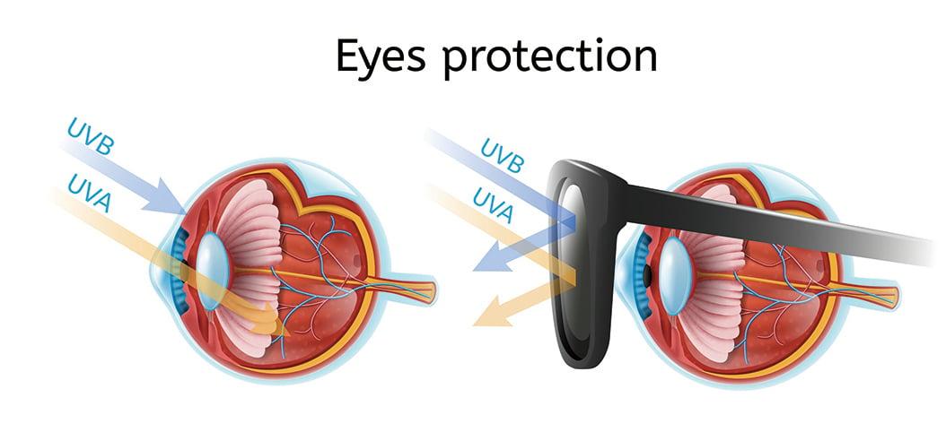 太陽眼鏡對眼睛的保護