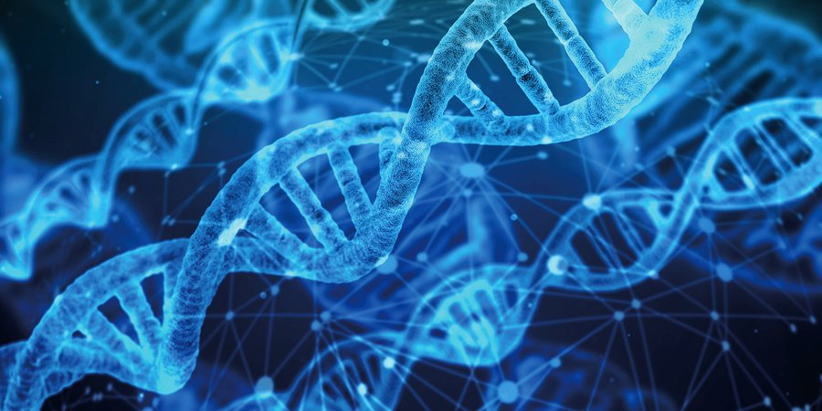 人類基因有1/5不是「真實」的