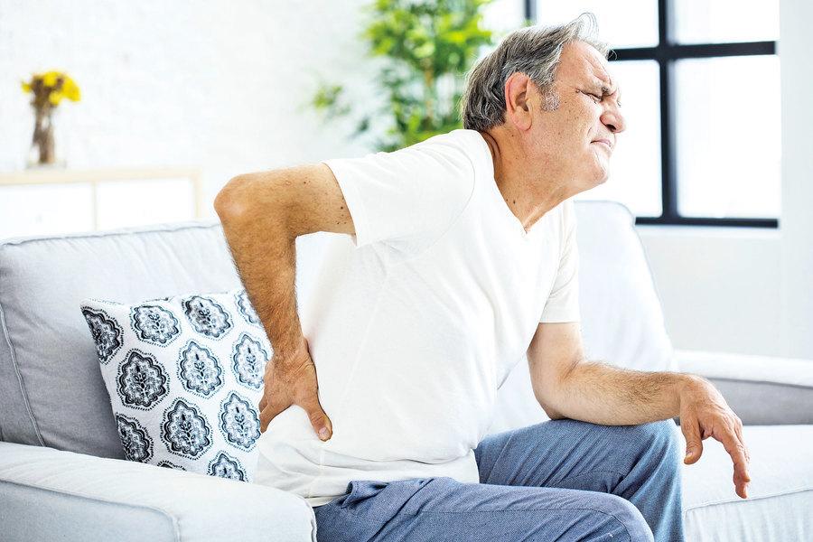 杜仲常用於治腎虛腰痛