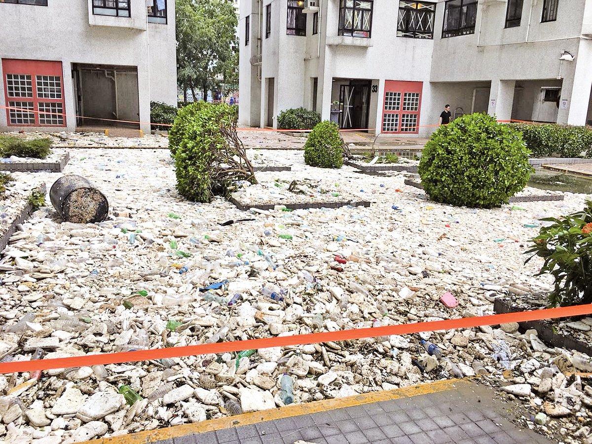 本文作者指一場颱風暴露本港城市環保及綠化問題十分嚴峻,減廢更刻不容緩,巨量海洋垃圾沖積上岸,碎成粒狀的發泡膠嚴重影響海洋生態及食物鏈。圖為杏花邨風災後滿佈碎粒狀發泡膠。(大紀元資料圖片)