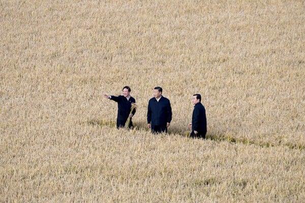 習近平9月25日抵達黑龍江省考察,他首先到七星農場北大荒精準農業農機中心,了解糧食生產和收穫情況。(微博圖片)