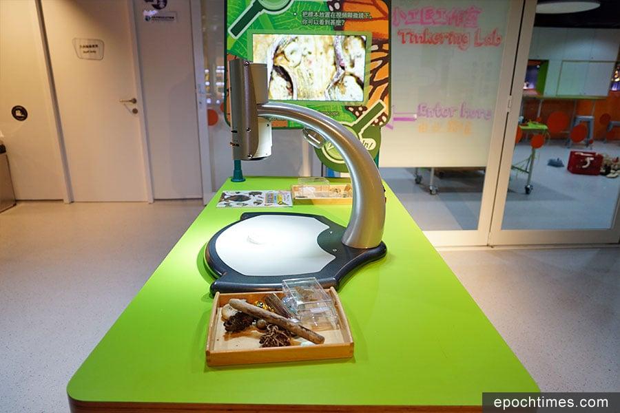 「放大來看看」設有高清顯示屏,將標本在顯微鏡下顯示,給孩子們探索微觀世界。(曾蓮/大紀元)