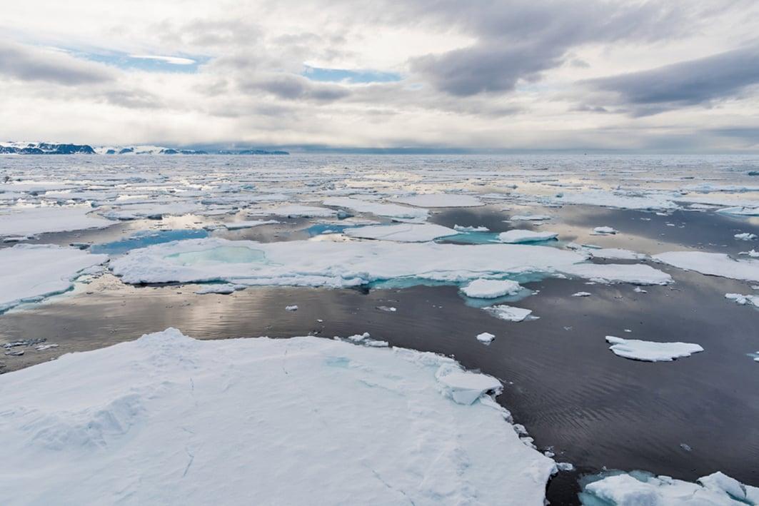 國際協議規定,禁止在北冰洋中部捕魚。(Shutterstock)