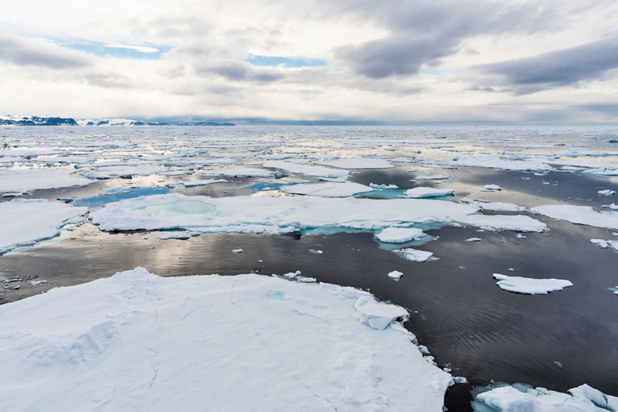 禁北冰洋中部商業捕魚 八國簽協議