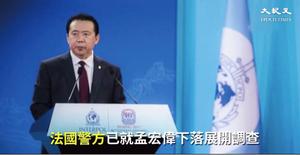 析國際刑警主席孟宏偉出事內幕