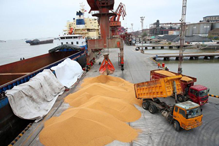 美國是世界第二大豆出口國,僅次於巴西,中國則是大豆最大買家,約占全球大豆貿易量的三分之二。中國在2016年進口了9,300萬公噸大豆,主要進口自巴西、美國和阿根廷。(AFP/Getty Images)