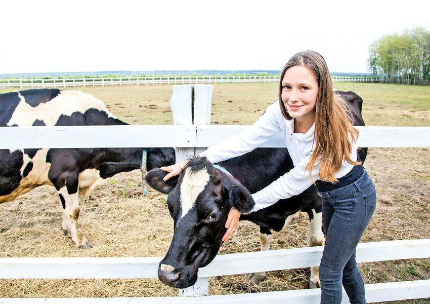 抱一抱奶牛可以減輕壓力幫助治病