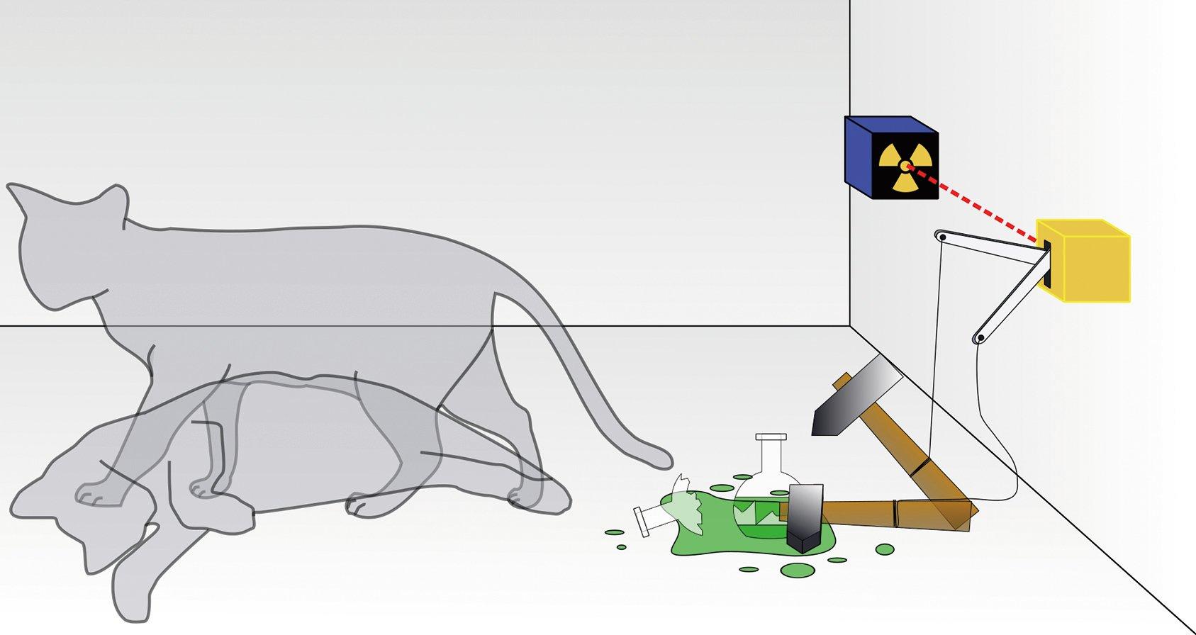 把一隻貓、一個裝有氰化氫氣體的玻璃燒瓶和放射性物質放進封閉的盒子裏。當盒子內的監控器偵測到衰變粒子時,就會打破燒瓶,殺死這隻貓。根據量子力學的哥本哈根詮釋,在實驗進行一段時間後,貓會處於又活又死的疊加態。(維基百科)