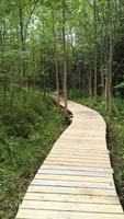 行完加拿大最長步道 情侶暢談見聞