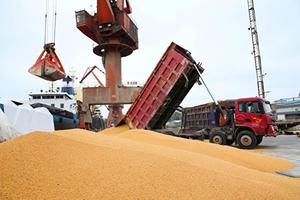 兩艘貨輪載美國大豆起航 前往中國港口