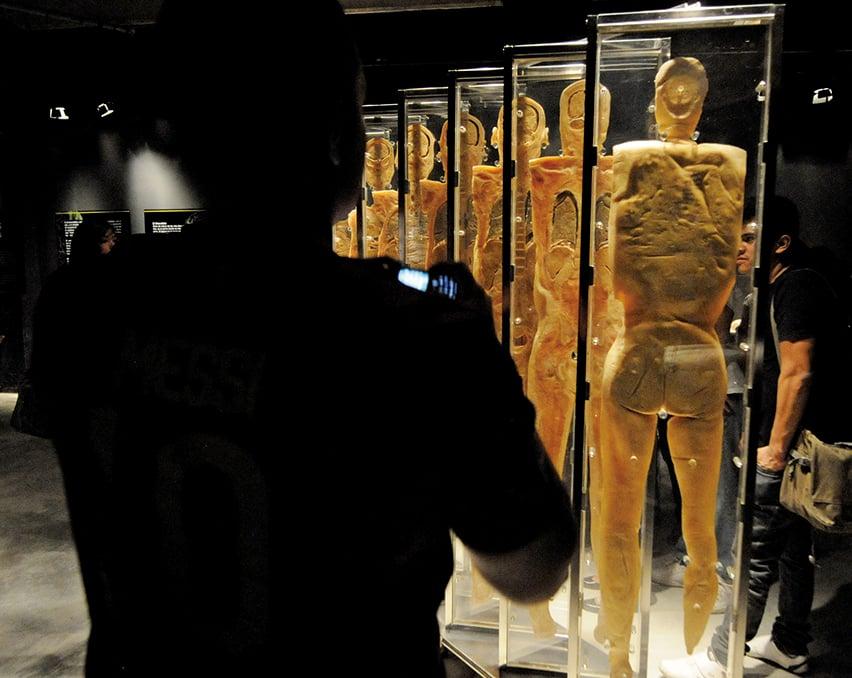過去曾在台灣展出的人體展覽「Real Human Bodies」,近期遭到瑞士洛桑市封殺。 (AFP)