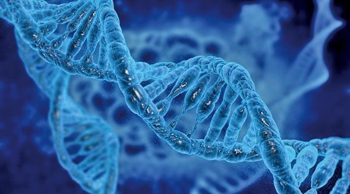 一項新研究顯示,美國60%的白人可以在公開的基因族譜數據庫中找到匹配。(shutterstock)