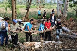 風災義工持續行動 南生圍赤桉樹林步道恢復通行
