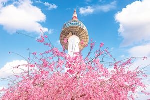 南韓美食主題街(上)