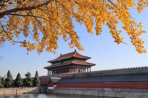高天韻:回歸傳統 中國才能走向正常、美好