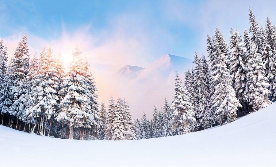 立冬到 養精蓄銳好時機