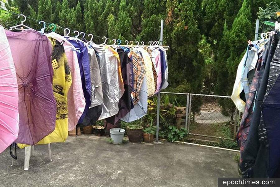拆去傘骨的傘布,洗乾淨後晾乾,可以發揮多重創意。(受訪者提供)
