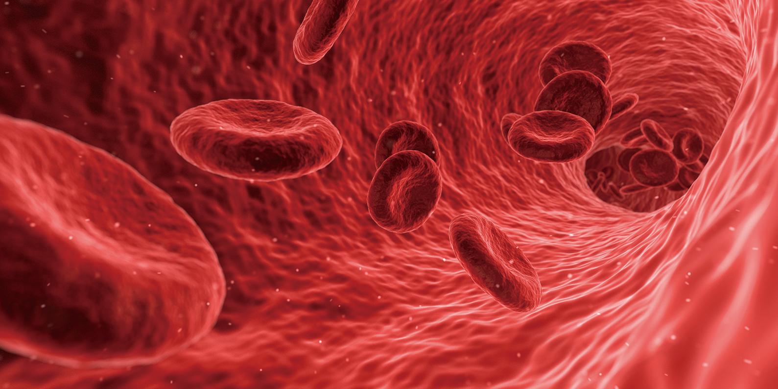 新研究發現人體能在極短時間內自動平衡血壓的奇妙原理。(Creative Commons)