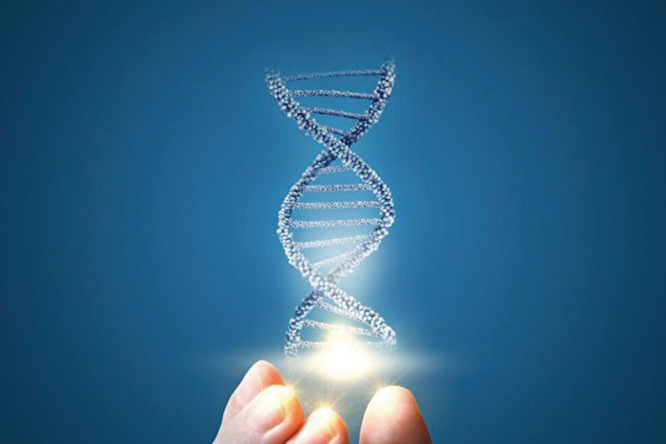 德國的一組科學家發表研究表示,在他們的研究對像中,96%的人對CRISPR都預先存在有免疫力。(ShutterStock)
