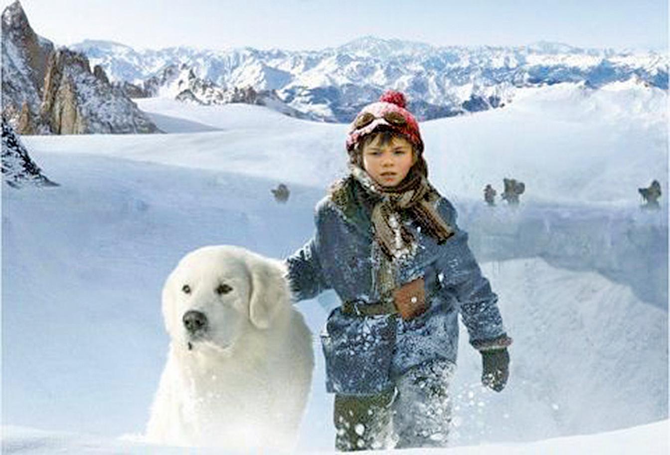 聖誕電影《靈犬雪麗:永遠的朋友》(康文署)