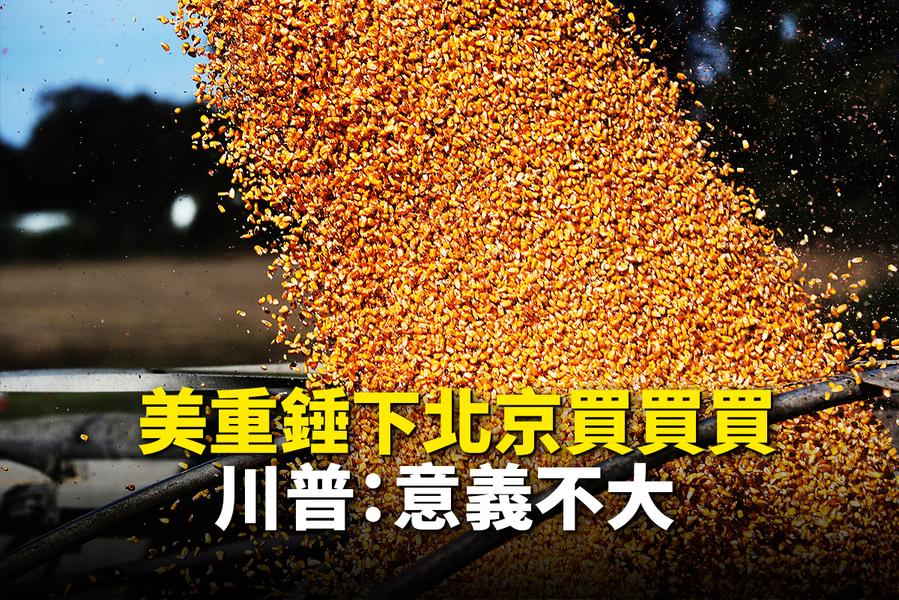 美農業部:中共不會完成所承諾農產品採購目標