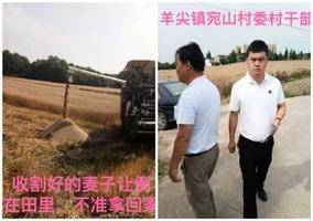 江蘇農民抗議政府剋扣惠農補助 小麥被搶收