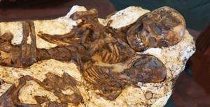 母愛亙古不變 台中出土五千年前母子相擁遺骨