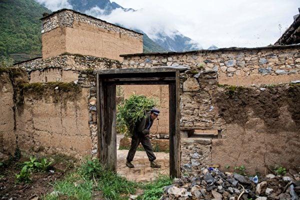 儘管中國2020年發生的地震、颱風、水災、疫情持續不斷,但是中共當局還是「按照既定方針」宣佈全國貧困縣全部「脫貧摘帽」。圖為2018年4月23日四川阿壩州村民正在將牲畜的食物運送到老村落。(Johannes Eisele/AFP via Getty Images)