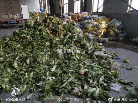 當官的吃不完 貴州援助鄂州蔬菜爛在倉庫