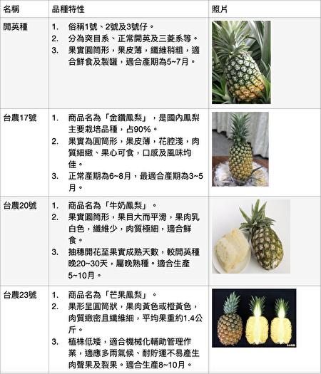 市面上常見菠蘿種類介紹。(農糧署提供)