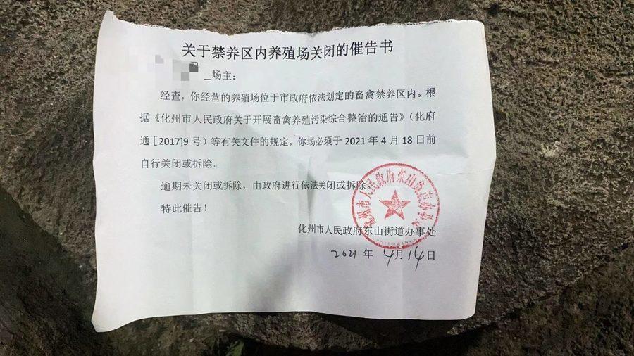 廣東養殖政策多變 村民養豬場遭強拆無賠償