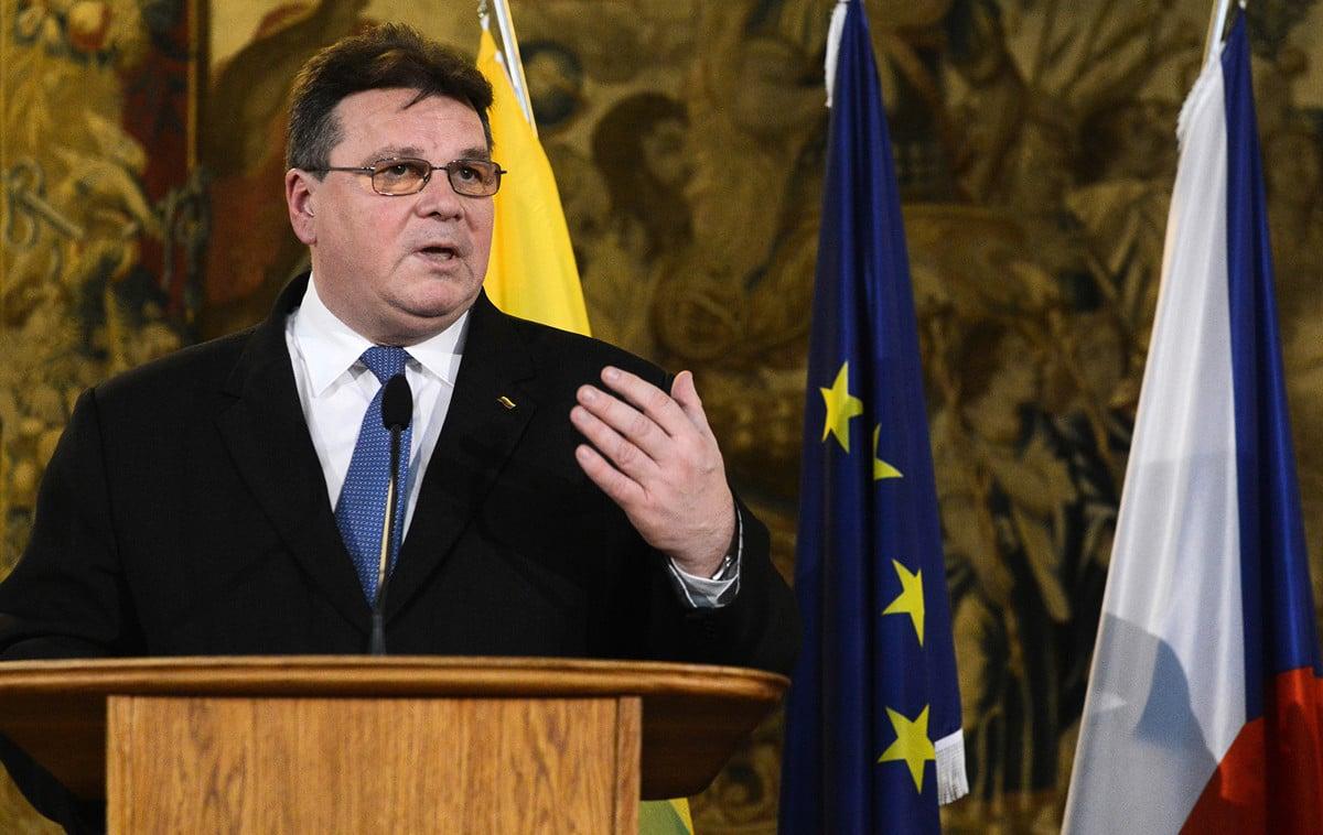 立陶宛外交部長林克維丘斯(Linas Linkevicius)表示,有些中共外交官的行為活躍程度越界,這是不可接受的,其行為與他們的外交身份不符。(MICHAL CIZEK/AFP)