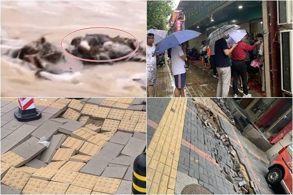 洪水退去的鄭州路面,出現至少數百處坍塌。當地停水停電,菜市、超市出現搶購潮,大量民眾生活陷困境。(受訪人提供)