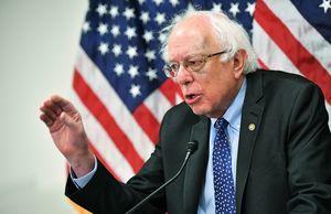 民主黨候選人拒社會主義標籤 卻暗自支持?