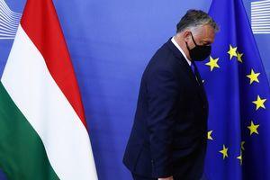 匈牙利阻撓歐盟批評中共香港政策 德官員譴責