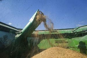 美:中方採購美農產品 達貿易協議目標71%